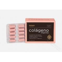 GOAH COLAGENO 60 CAPS